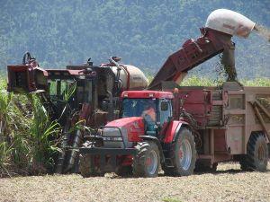 Working Harvester