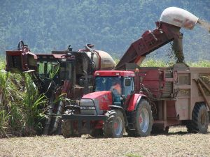 Working Harvester
