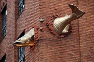 fish-building